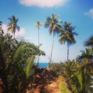 jungle-hike-gandoca