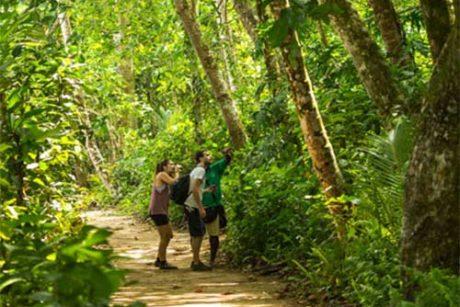 Hike-Costa-Rica